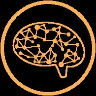 UPC-brain-3